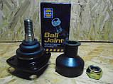 Шаровая опора нижняя ВАЗ 2101-2107 Жигули Hola (голландские), фото 2