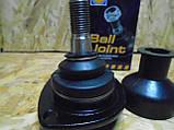 Шаровая опора нижняя ВАЗ 2101-2107 Жигули Hola (голландские), фото 4