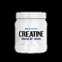AllNutrition Creatine Muscle Max 500g