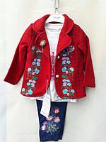 Детский костюм для девочки (1 - 4 года) купить оптом от производителя