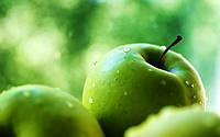 Урожай яблок в этом году будет самым низким за последних 6 сезонов