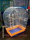 Клетка для попугая цинк Патриот 56х31х69, фото 4