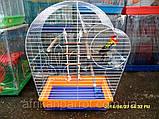Клетка для попугая цинк Патриот 56х31х69, фото 5