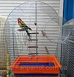 Клетка для попугая цинк Патриот 56х31х69, фото 7