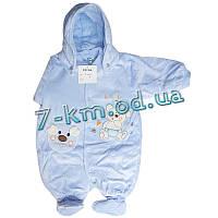 Комбинезон для младенцев An955 велюр 3 шт (0-9 мес)