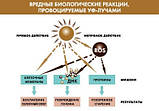 Institut Esthederm Солнцезащитный спрей при солнечной непереносимости INTOLERANCES Solaires,150 мл, фото 3