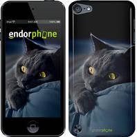 "Чехол на iPod Touch 5 Дымчатый кот ""825c-35-532"""