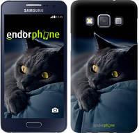 "Чехол на Samsung Galaxy A3 A300H Дымчатый кот ""825c-72-532"""