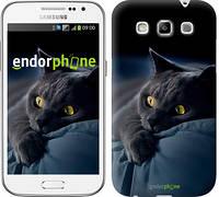 """Чехол на Samsung Galaxy Win i8552 Дымчатый кот """"825c-51-532"""""""