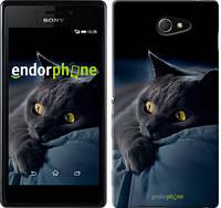 "Чехол на Sony Xperia M2 dual D2302 Дымчатый кот ""825c-61-532"""