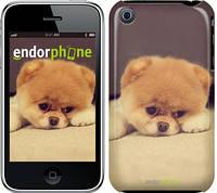 "Чехол на iPhone 3Gs Boo 2 ""890c-34-532"""