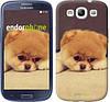 "Чехол на Samsung Galaxy S3 Duos I9300i Boo 2 ""890c-50-532"""