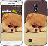 "Чехол на Samsung Galaxy S4 mini Boo 2 ""890c-32-532"""