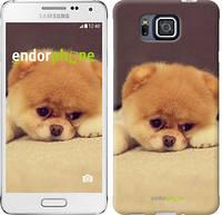 "Чехол на Samsung Galaxy Alpha G850F Boo 2 ""890c-65-532"""