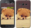 "Чехол на Samsung Galaxy Core 2 G355 Boo 2 ""890c-75-532"""