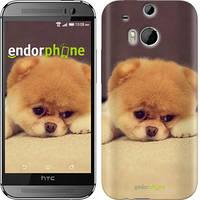 "Чехол на HTC One M8 Boo 2 ""890c-30-532"""