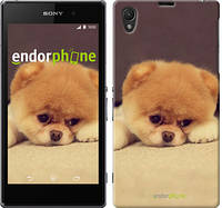 "Чехол на Sony Xperia Z1 C6902 Boo 2 ""890c-38-532"""