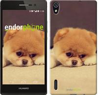 "Чехол на Huawei Ascend P7 Boo 2 ""890c-49-532"""