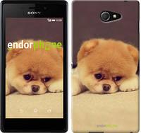 """Чехол на Sony Xperia M2 D2305 Boo 2 """"890c-60-532"""""""