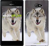 "Чехол на Sony Xperia M2 dual D2302 Бегущий волк ""826c-61-532"""