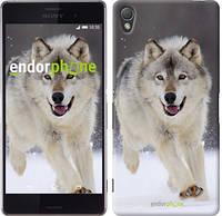 """Чехол на Sony Xperia Z3 dual D6633 Бегущий волк """"826c-59-532"""""""