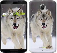 "Чехол на Motorola Nexus 6 Бегущий волк ""826c-67-532"""