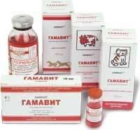 Терапевтическая эффективность гамавита при лечении мелких домашних животных