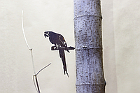Садовая фигурка Птица 13