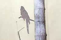 Садовая фигурка Птица 12