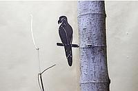 Садовая фигурка Птица 19