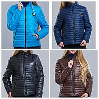 Женская куртка осень-весна + большие размеры