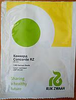 Семена салата Конкорд. Упаковка 1 000 семян.