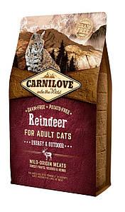 Carnilove Cat 2 kg Raindeer - Energy & Outdoor (Корнилав 2кг сухой корм для активных кошек)