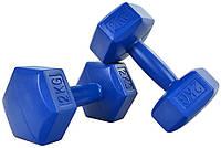 Набор гантелей Profit hex синие 2x2kg /dk4144