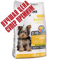 1st Choice (Фест Чойс) с курицей сухой супер премиум корм для щенков мини и малых пород, 2,72 кг