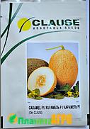 Семена дыни Карамель F1 1000 шт, Clause  (Клоз), Франция
