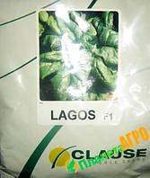 Семена шпината Лагос F1, 250 г, Clause (Клоз), Франция