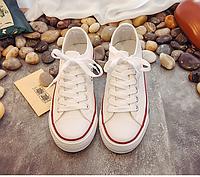 Кеды Converse белые  36-41 р
