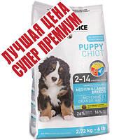 1st Choice (Фест Чойс) с курицей сухой супер премиум корм для щенков средних и крупных пород, 15 кг
