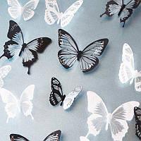 Шикарные бабочки 3D для декораций, фото 1