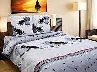 Комплект постельного белья 821 «Коты» ТМ ТЕП (Украина) бязь полуторный