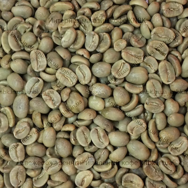 Арабика Гондурас (Arabica Honduras) 200г. ЗЕЛЕНЫЙ кофе