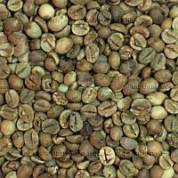 Робуста Уганда (Robusta Uganda) 200гр. ЗЕЛЕНЫЙ кофе