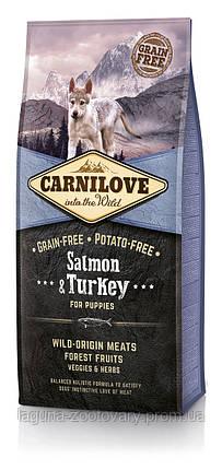 Carnilove Salmon & Turkey  Puppy 12 kg (корм для щенков), фото 2