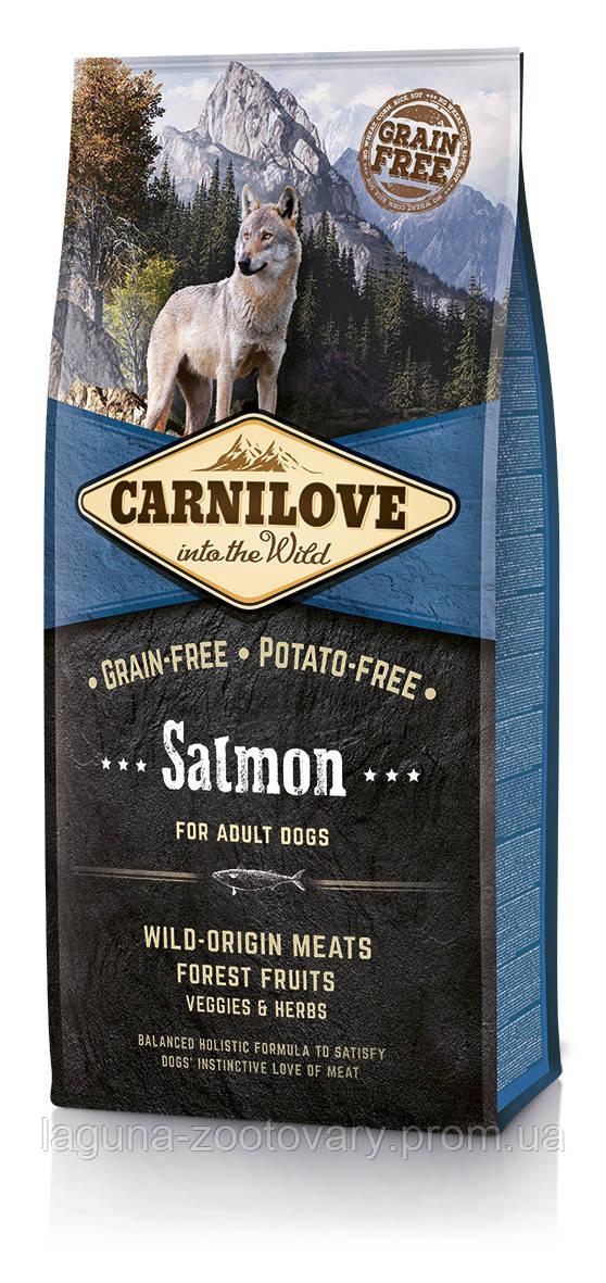 Carnilove Salmon Adult 12 kg (корм для взрослых собак с лососем), доставка