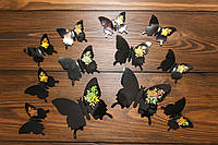 Бабочки для декора интерьера черные