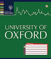 Тетрадь в клетку Oxford Colors на 12 листов  793923