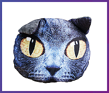 Подушка кот с 3D принтом (подушка+съёмный чехол) 42х38 см.