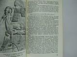 Садаев Д.Ч. История древней Ассирии (б/у)., фото 8
