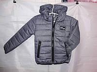 Куртка детская весна-осень Boy 92-116